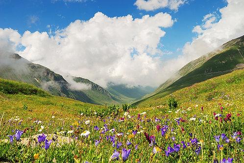 100% natürlicher Sinnesduft: Bergblumen