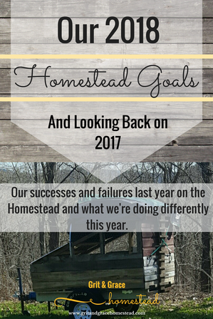 Homestead Goals 2018