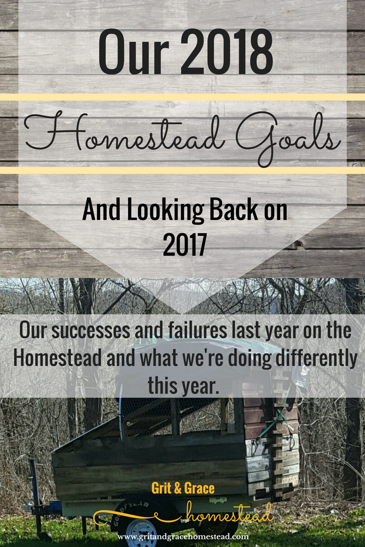 Our 2018 Homestead Goals