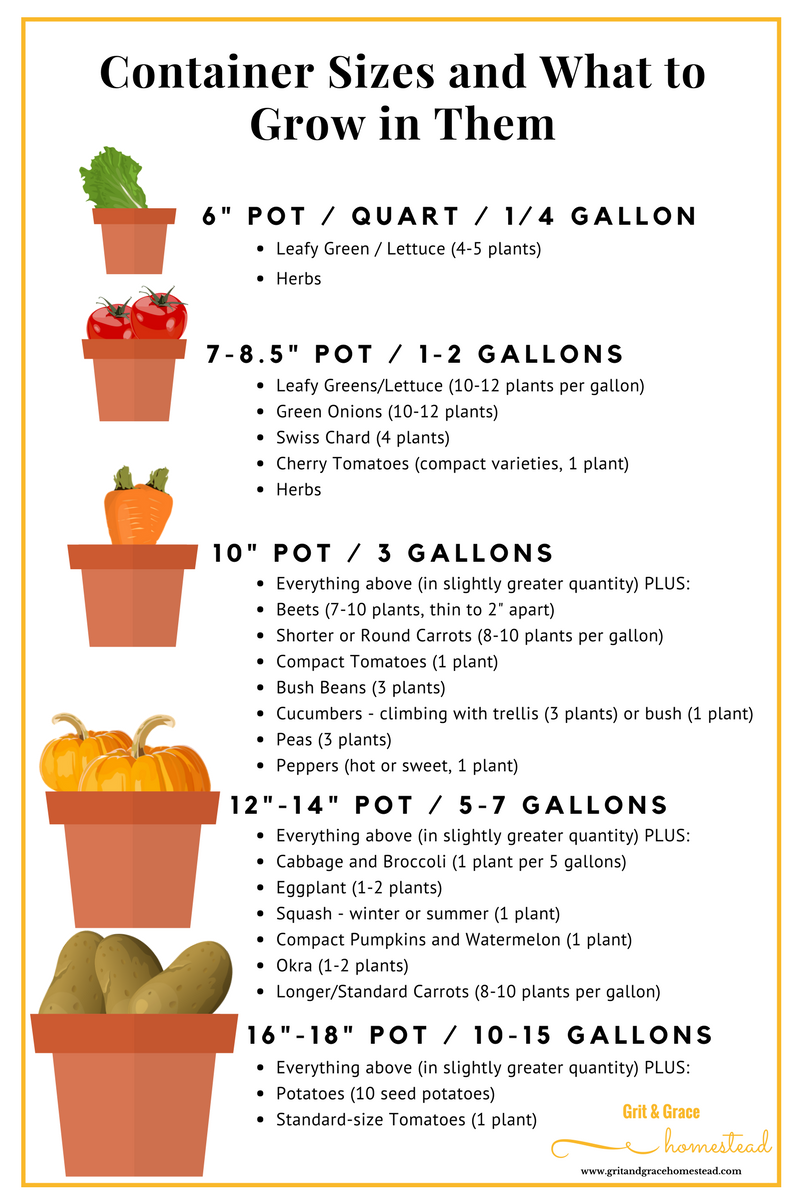 Container Sizes and what to grow in each