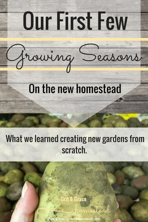 Starting a New Homestead Garden...What We Learned
