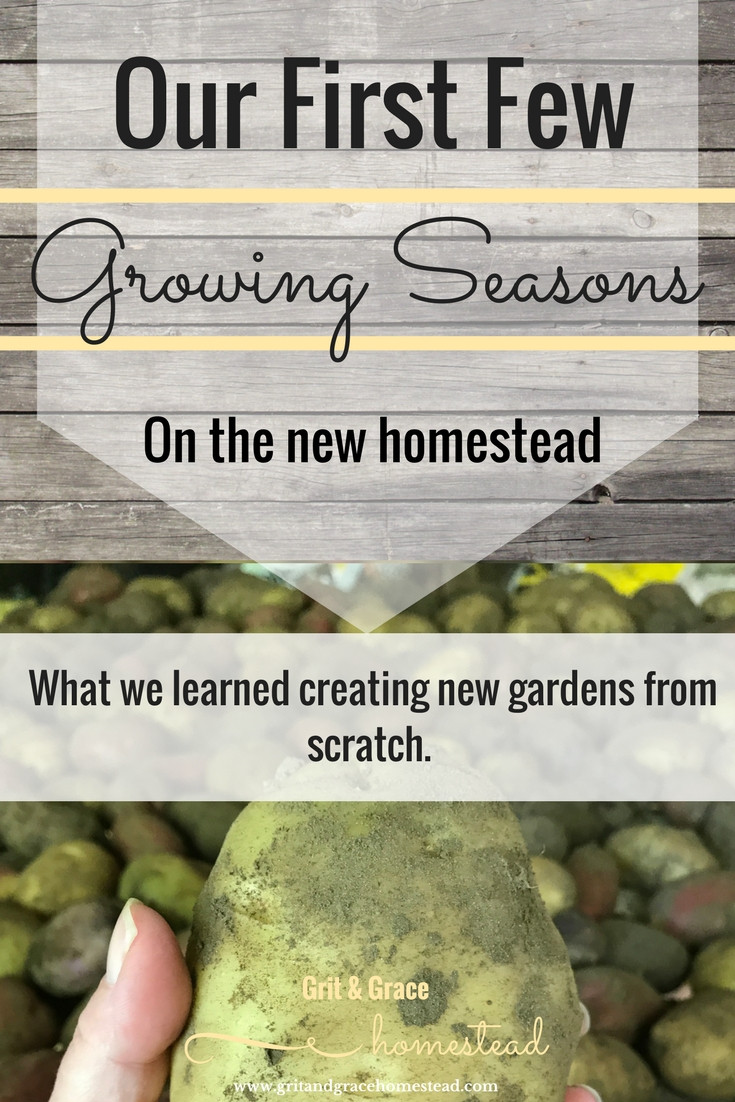 What we learned starting a new homestead garden