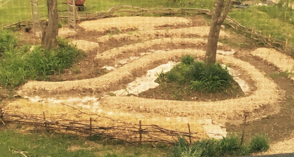 Wood chips in the potager garden