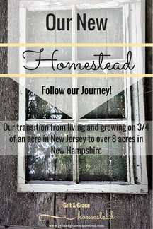 Moving to A Bigger Homestead: Our Journey