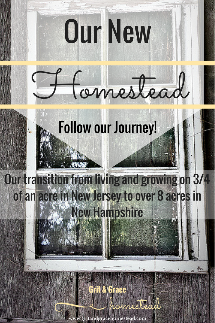 Documenting our new Homestead Journey | Grit & Grace Homestead