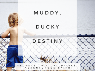 Muddy, Ducky Destiny