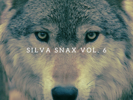 Silva Snax Vol. 6/The Magic Flicker/Have Here (Silva Hound Remix)