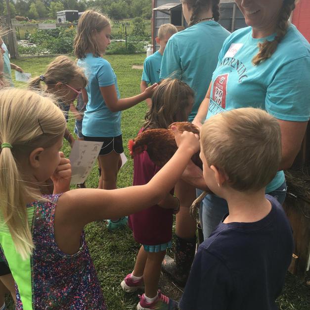 Summer Farm Camps