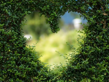 Das intelligente Herz