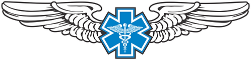 WG#017 S2 WINGS WITH CADUCEUS