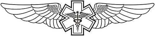 WG#011 S1 WINGS WITH CADUCEUS