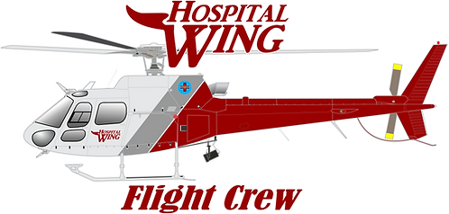 AS350#053 - TENNESSEE - HOSPITAL WING