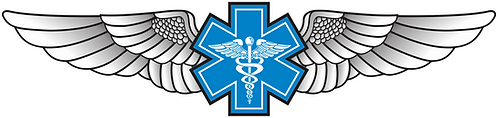 WG#014 S1 WINGS WITH CADUCEUS