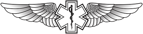 WG#003 S1 WINGS ROD OF ASCLEPIUS