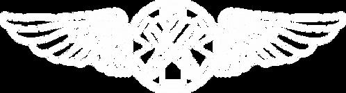 JL#003 RESCUE SWIMMER WINGS