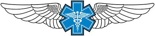 WG#012 S1 WINGS WITH CADUCEUS