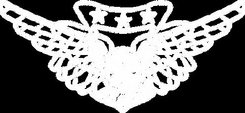 JL#009  USN USMC COMBAT AIRCREW