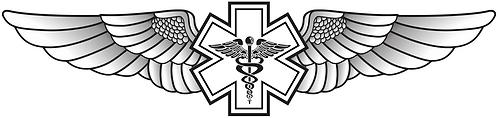 WG#013 S1 WINGS WITH CADUCEUS