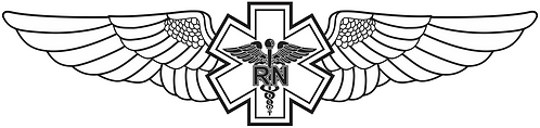 WG#026 S1 WINGS WITH CADUCEUS RN