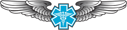 WG#019 S2 WINGS WITH CADUCEUS