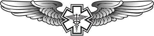WG#018 S2 WINGS WITH CADUCEUS