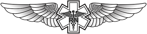 WG#028 S1 WINGS WITH CADUCEUS RN