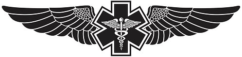 WG#015 S1 WINGS WITH CADUCEUS