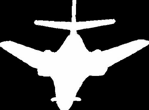 FWS#315 B-1 BOMBER