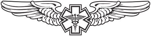 WG#016 S2 WINGS WITH CADUCEUS