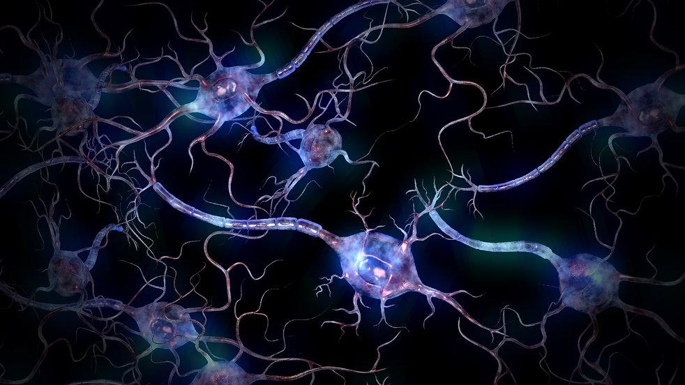 neuronfield.jpg