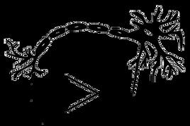 fridmanlab logo white bg.png
