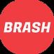 Asset 1BRASH.png