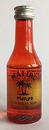 Rum Rhum Ron Malibu Mango Miniature