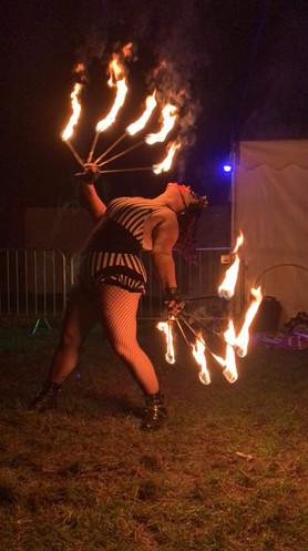 Violet Fire Fans