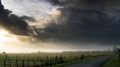 nuages4_foret_bruno.jpg