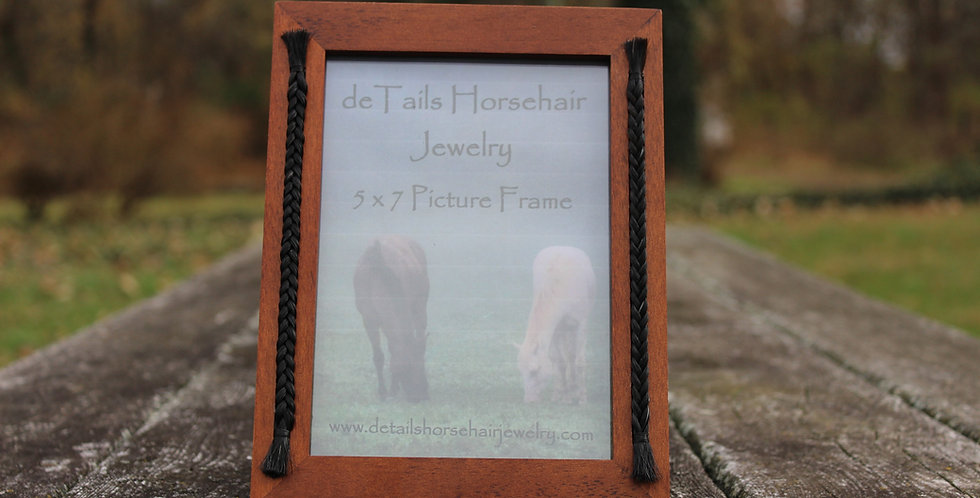 5 x 7 Picture Frame