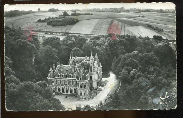 Vue aérienne château de La Falaise