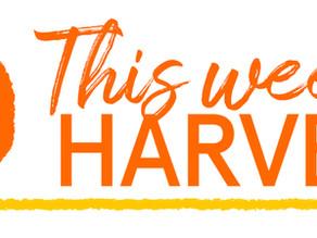 Dec. 4:  This week's harvest