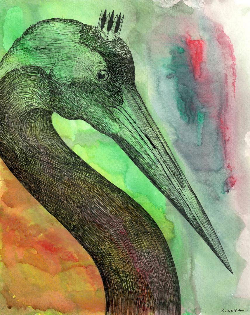 Endangered Kingdom series: red-crowned Crane
