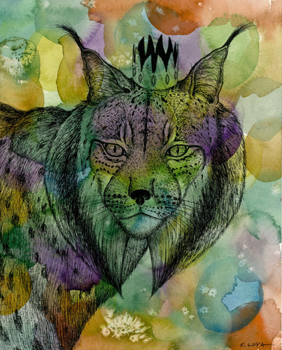 Endangered Kingdom series: Iberian Lynx