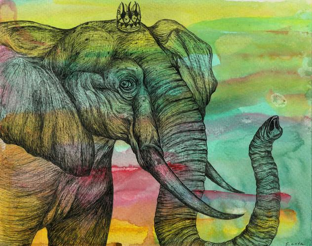 Endangered Kingdom series: African Elephant