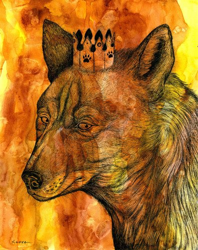 Endangered Kingdom series: North American Red Wolf
