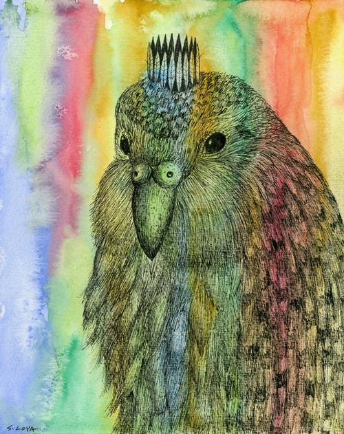 Endangered Kingdom series: Kakapo
