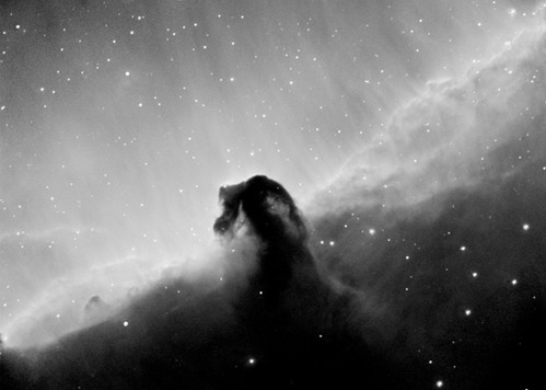 Horsehead in Hydrogen Alpha