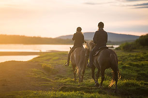 nature-horse-riding-cavan.jpg