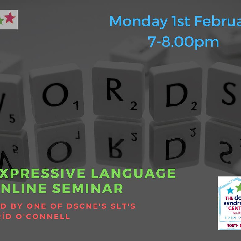 Expressive Language Seminar