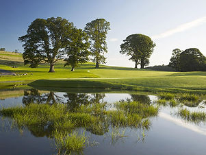 farnham-estate-golf.jpg