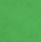 Kongo Grün Vert-Congo