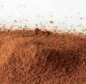 Sand Runkelrot