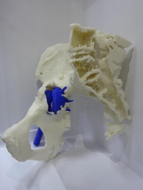 Modelo 3D. Vista lateral
